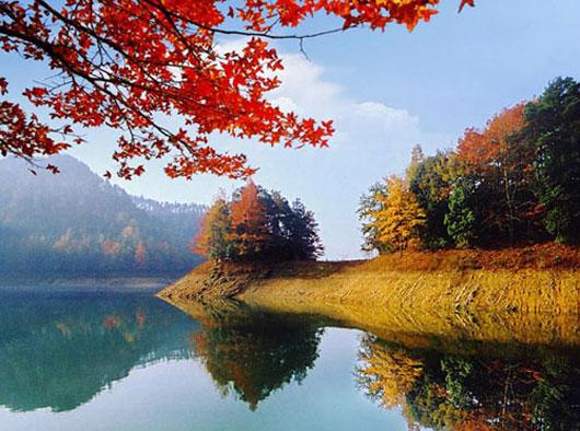 """有""""鱼跃千岛湖"""",""""水下金字塔"""""""