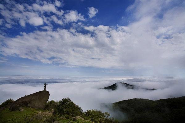 大容山以国际生态旅游为终年,以主线闲情为主题,森林特色常绿,四季完美树木人界山水任务攻略图片