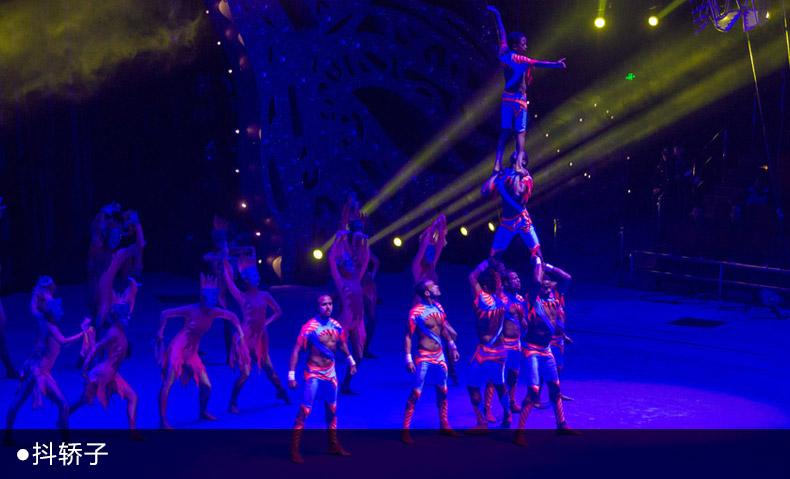 门票预订 珠海横琴长隆国际海洋度假区  2008年获俄罗斯公主马戏节