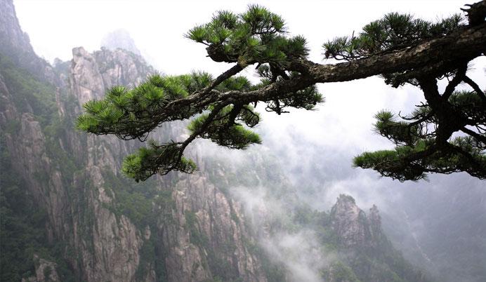 超值——黄山,秀水千岛湖,杭州醉美西湖空调双卧六天