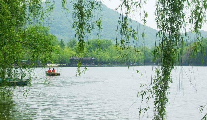 壁纸 垂柳 风景 柳树 摄影 树 桌面 692_402