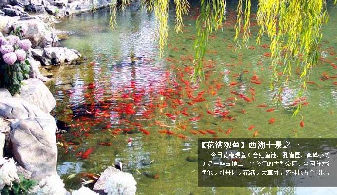 千岛湖杭州海宁西塘地图
